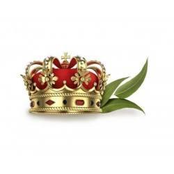 Esenta 1000ml royal eucament