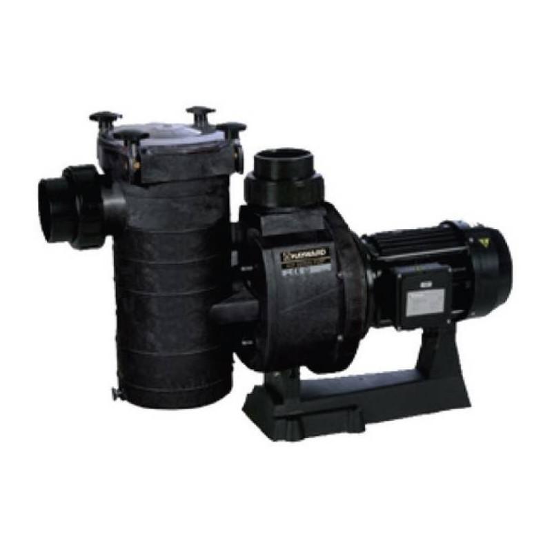 Pompa HCP 3800 2.5 CP 230V  de la Hayward Commercial Aquatics referinta HCP38251E